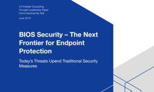 BIOS SECURITY: THE NEXT FRONTIER FOR ENDPOINT PROTECTION