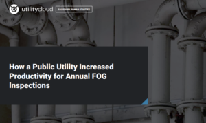 HOW A PUBLIC UTILITY INCREASED PRODUCTIVITY FOR ANNUAL FOG INSPECTIONS