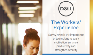 THE WORKERS' EXPERIENCE REPORT